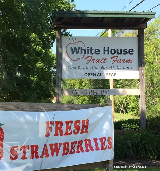 White House Fruit Farm Strawberries