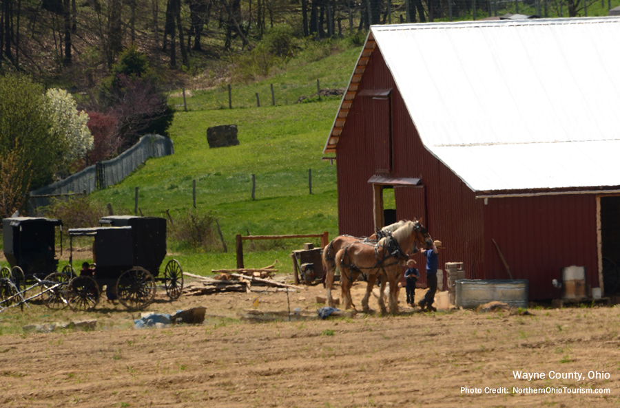 Ohio Amish Country - Wayne County