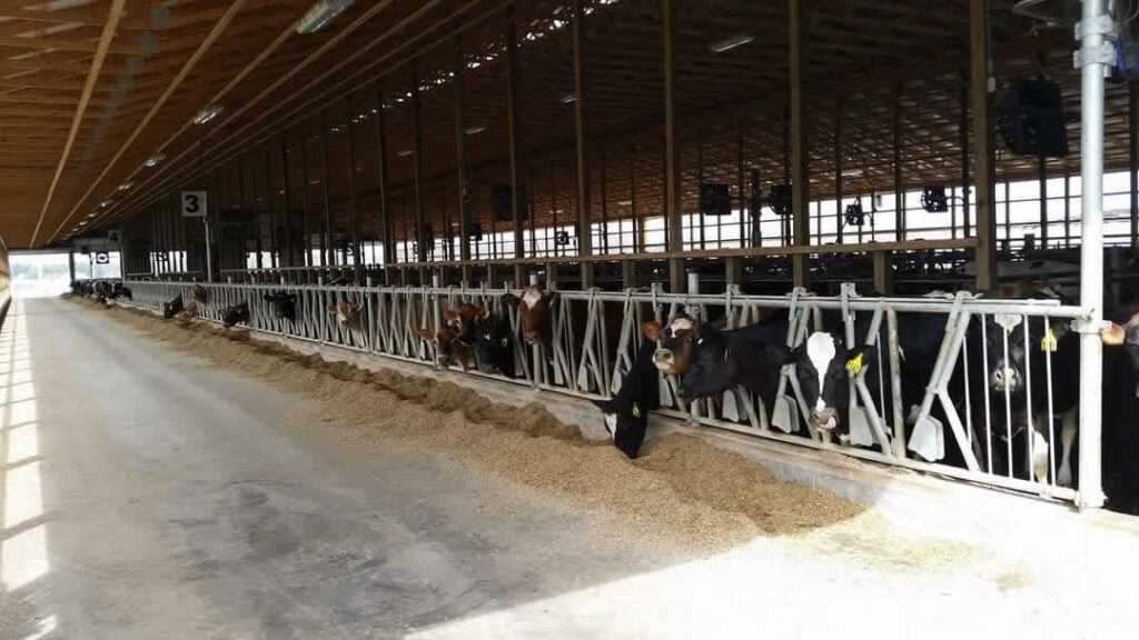 Harmony Farms Wayne County Tour