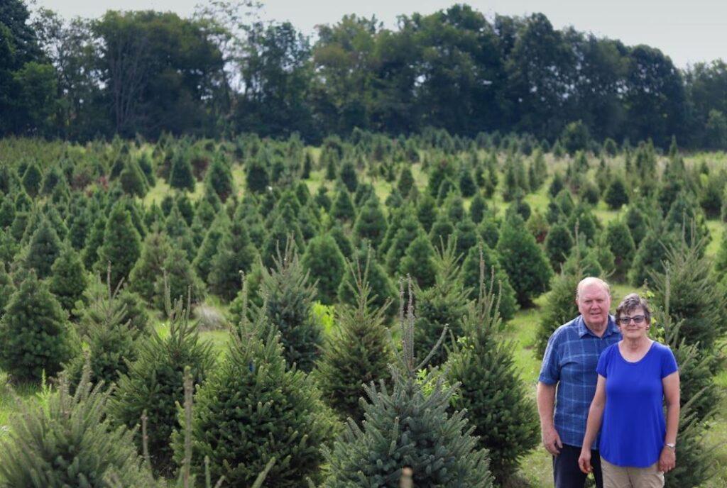 Dunlap Tree Farm