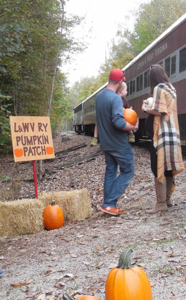 Lorain & West Virginia Railway Fall Train