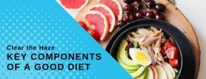 Clear the Haze: Key Components of a Good Diet