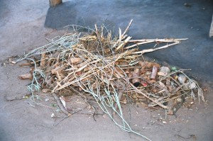 The pile of jumbled roots at a traditional healers' home or practice. Inspite of the looks, the healer or ng'anga knows all their roots by name and how they are used for treatment of various illnesses.