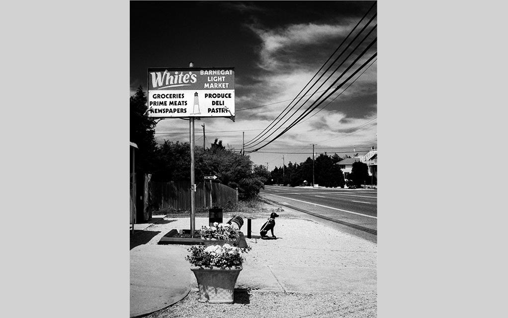 White's Market, Barnegat NJ
