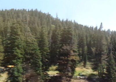 RSC721 - summer view 2
