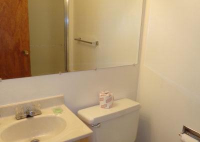 jackson lfg Bath - Downstairs 2