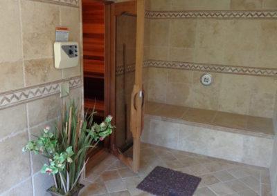 Shower & Sauna Door