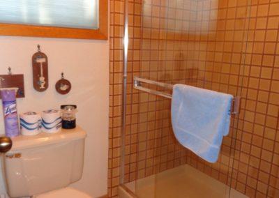 15 Master Bath - Shower