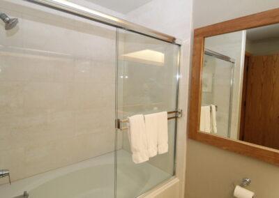 Downstairs Bath - tub-shower