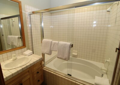 Master Bath - sink & soaker tub-shower