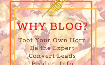 5 Reasons You Should Add a Blog to Your Business Website