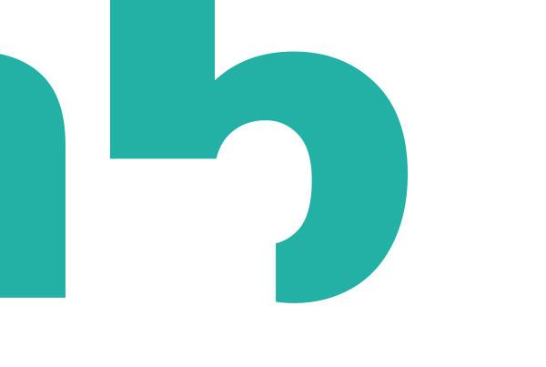 nb cropped logo