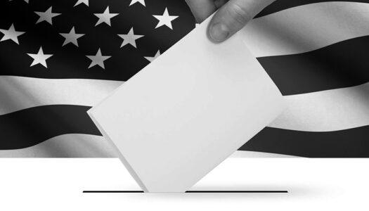Syllabus: Election 2020