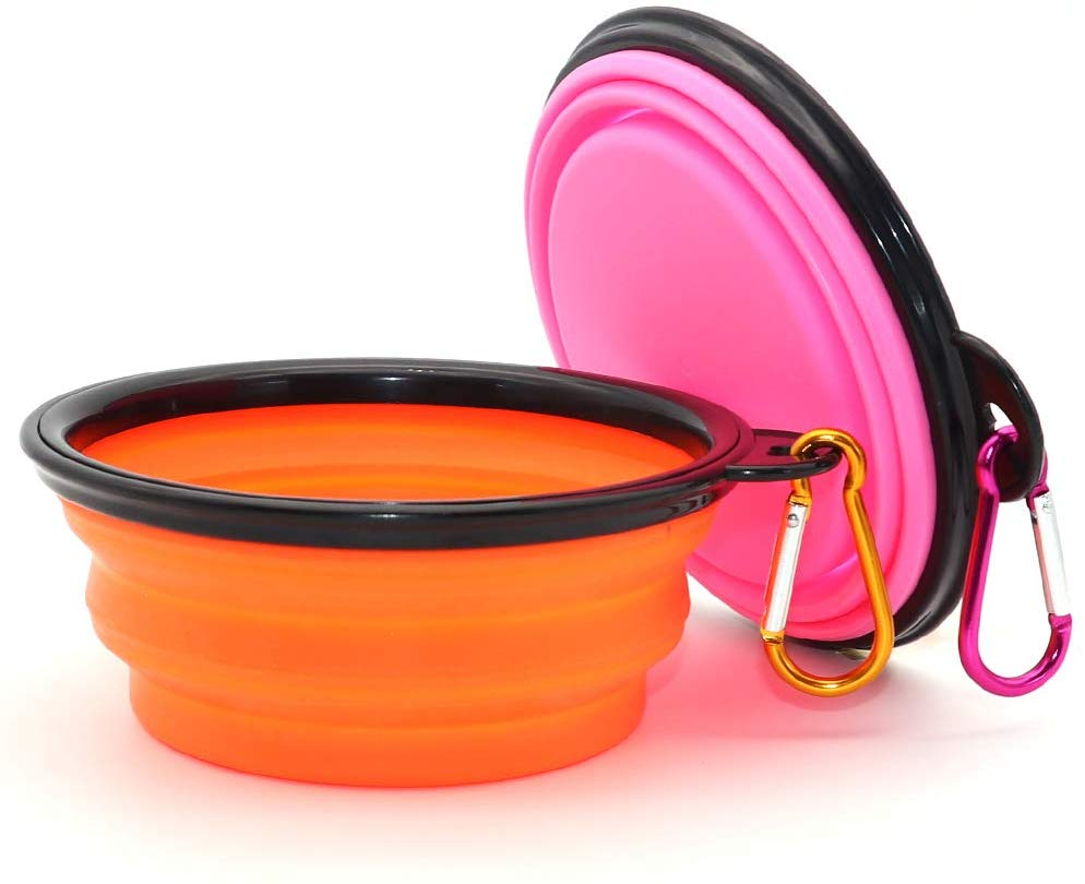 Collapsible Dog Bowl Dog Mom Guide