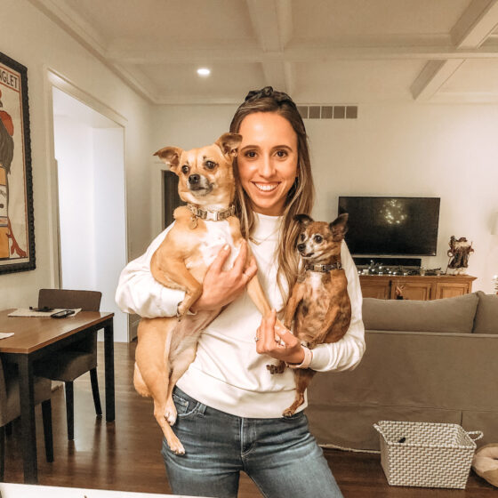 dog mom guide uncover the glow