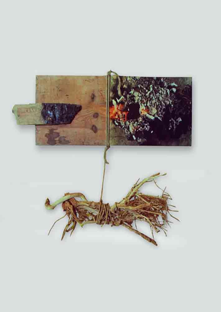 הסנה הבוער, 1978, תבליט עץ,50 על 60 ס''מ [הוצג בגלריה ארבל, תל אביב]