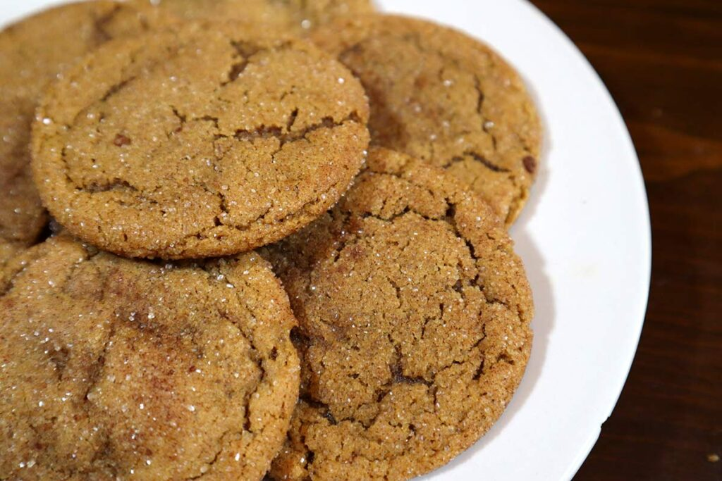 close up gingersnaps cookies photo