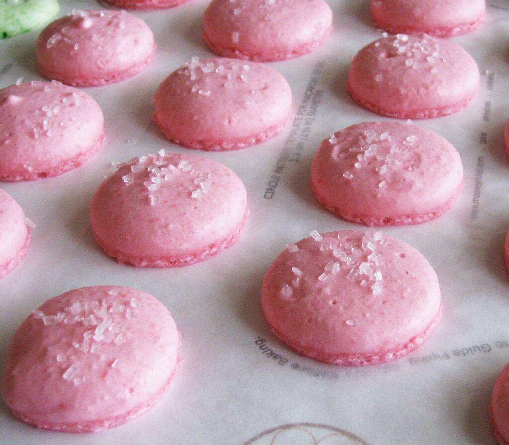 Bubblegum Macarons After Baking