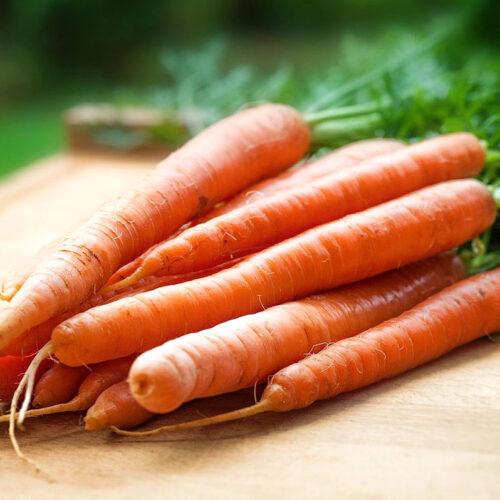 carrots for carrot cake for dogs