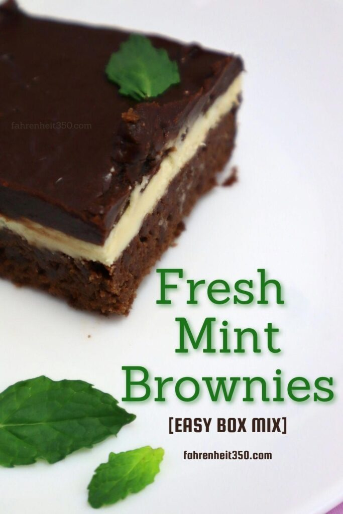 Totally Yummy and Flawless Fresh Mint Brownies [EASY BOX MIX]