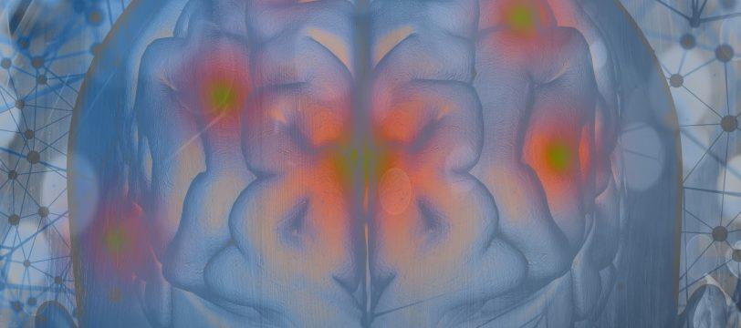 Brain Exercises Workbook