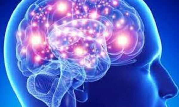 Genetically engineered 'Magneto' protein remotely controls brain and behavior