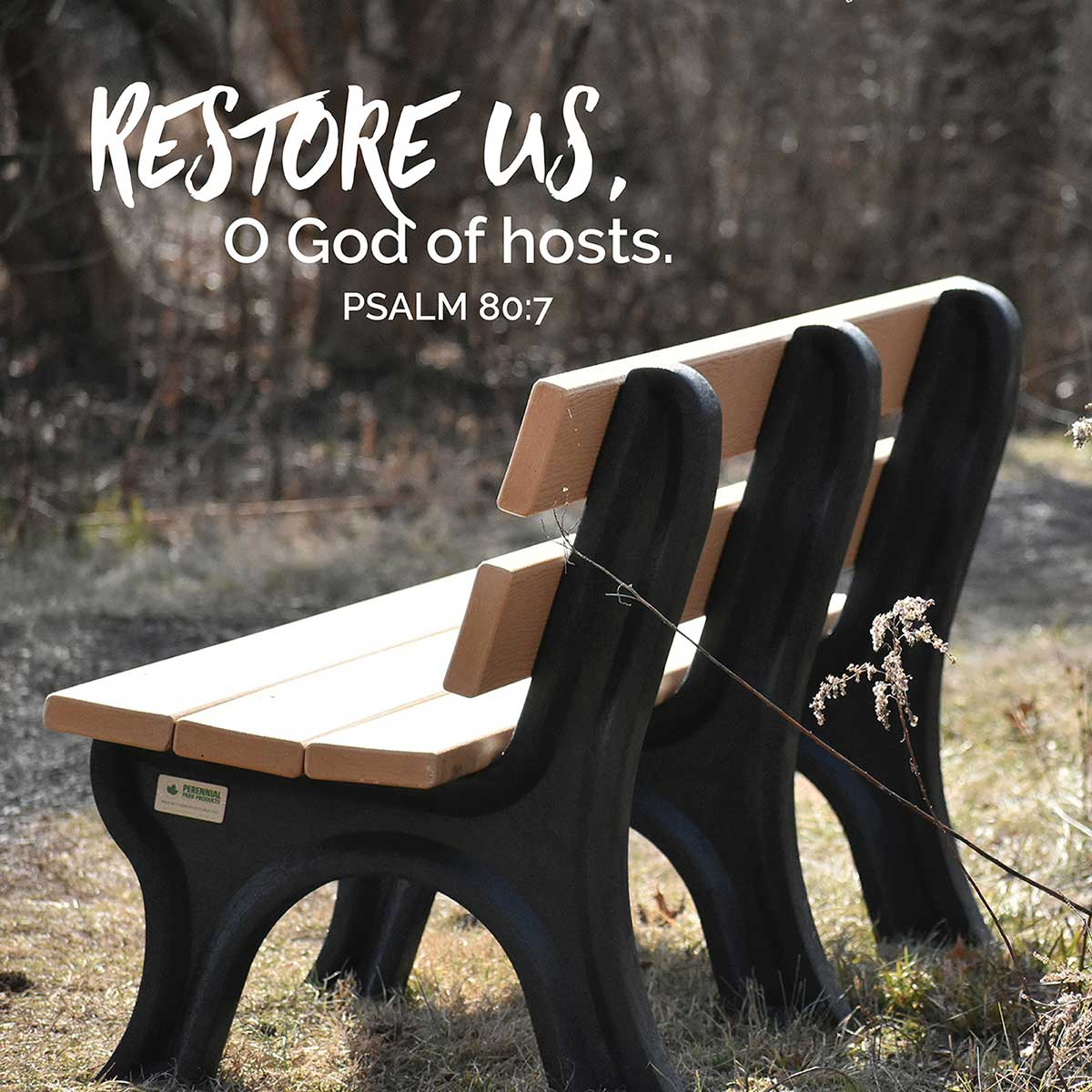 Revive, Restore, Renew!