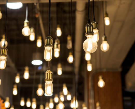 photo of various sizes of light bulbs