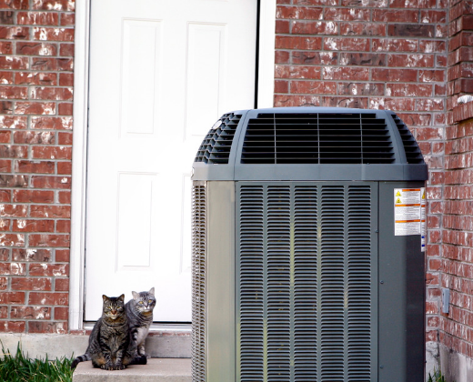 photo of air conditioning unit and two kittens on a doorstep. It illustrates the blog post on the website about Heat and Cooling.