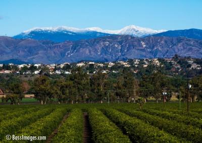 19 Ventura County Scenics