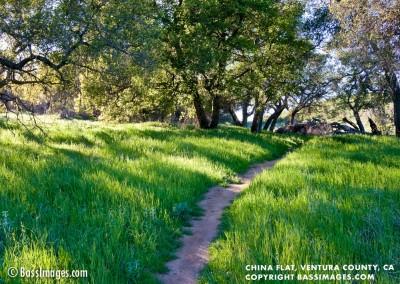 25 Ventura County Scenics