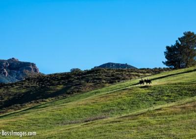 41 Ventura County Scenics