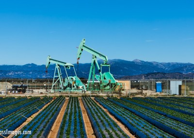 Oil Pumps and Strawberries
