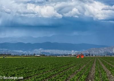 Oxnard-field-clouds