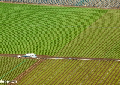 Santa-Rosa-farm field