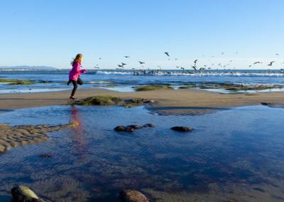 Ventura Pier Beach 07