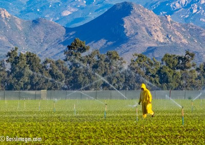 irrigation_man_camarillo
