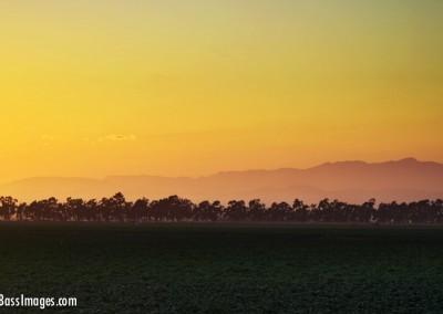 oxnard farm sunset