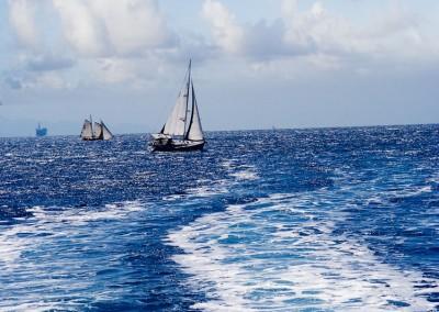 sailboat and wake