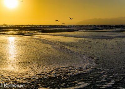 Ventura beach by lagoon-2
