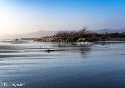 Ventura beach by lagoon-4