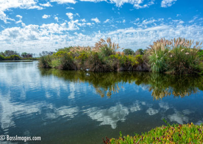 Ventura settling pond with clouds-1