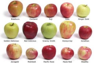 It's The Jewish New Year!  How Do You Like Dem Apples?