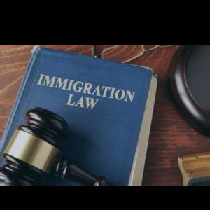 Curso de Derecho Migratorio
