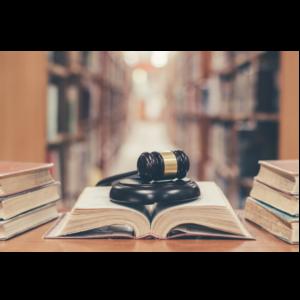 Introduccion Ingles Terminos Legales i