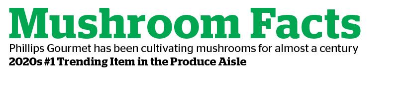 mushroom facts-01