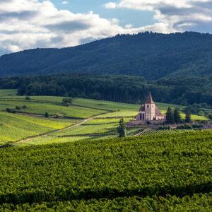Calixte-Cremant d'Alsace