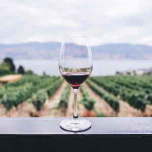 Helioterra Wines, Portland