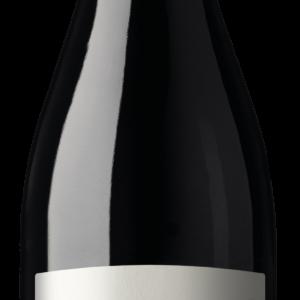 A Valpolicella Ripasso Superiore DOC 2017 bottle
