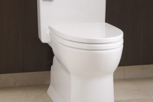 https://secureservercdn.net/198.71.233.37/jgm.4c3.myftpupload.com/wp-content/uploads/2015/03/Soiree-toilet-300x200.jpg